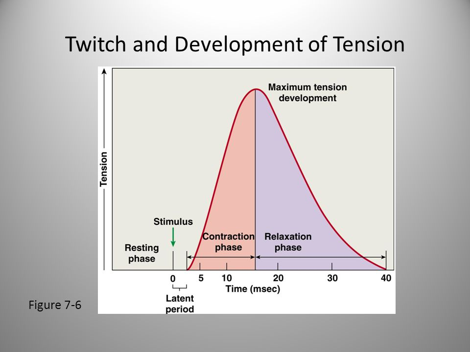 Twitch and Development of Tension Figure 7-6