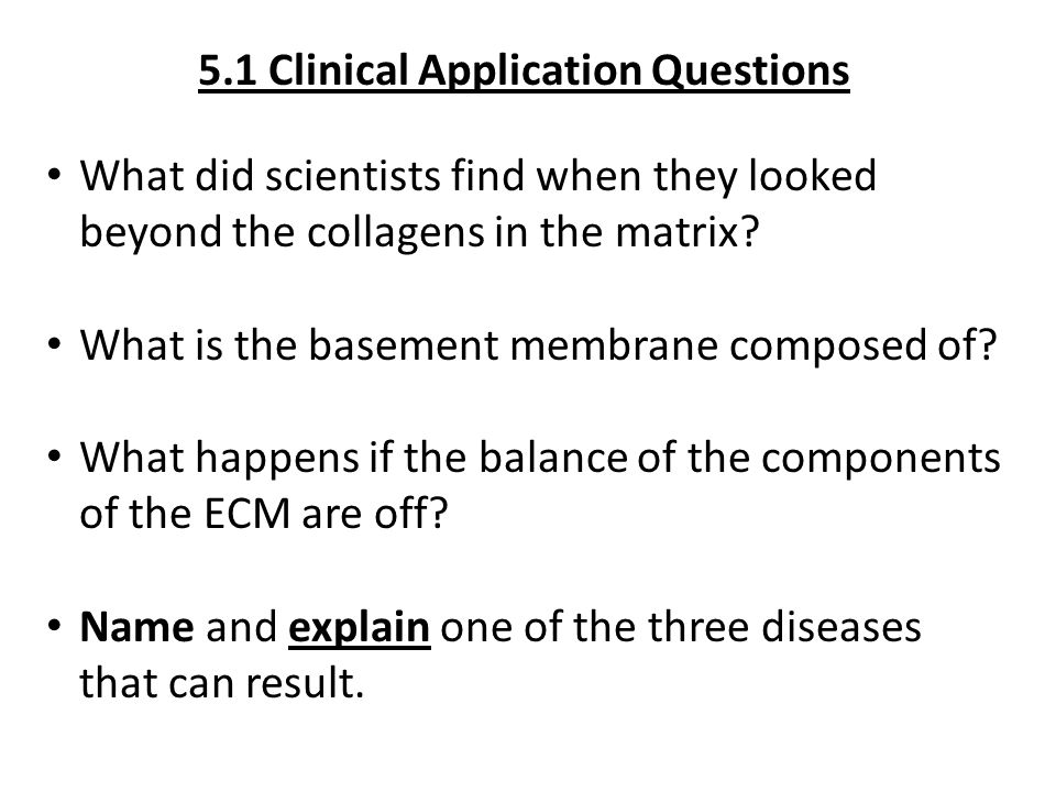 5.1 Clinical Application Questions What did scientists find when they looked beyond the collagens in the matrix? What is the basement membrane compose