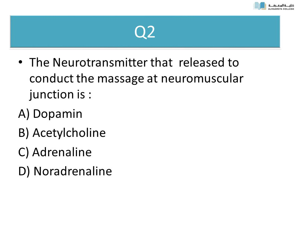 Q2 The Neurotransmitter that released to conduct the massage at neuromuscular junction is : A) Dopamin B) Acetylcholine C) Adrenaline D) Noradrenaline
