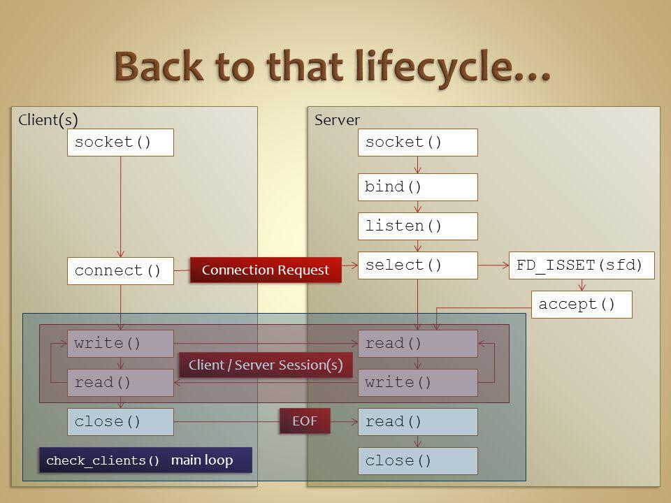 Server Client(s) socket() connect() write() read() close() socket() bind() listen() select() write() read() close() read() EOF Connection Request Client / Server Session(s) FD_ISSET(sfd) accept() check_clients() main loop