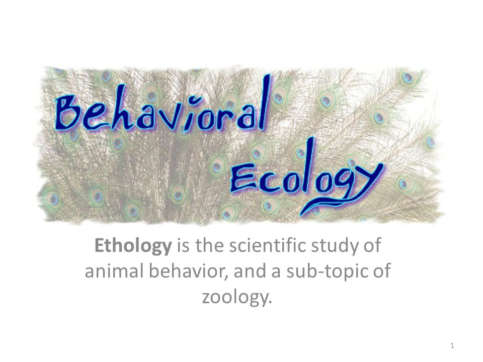 Ethology is the scientific study of animal behavior, and a sub-topic of zoology. 1