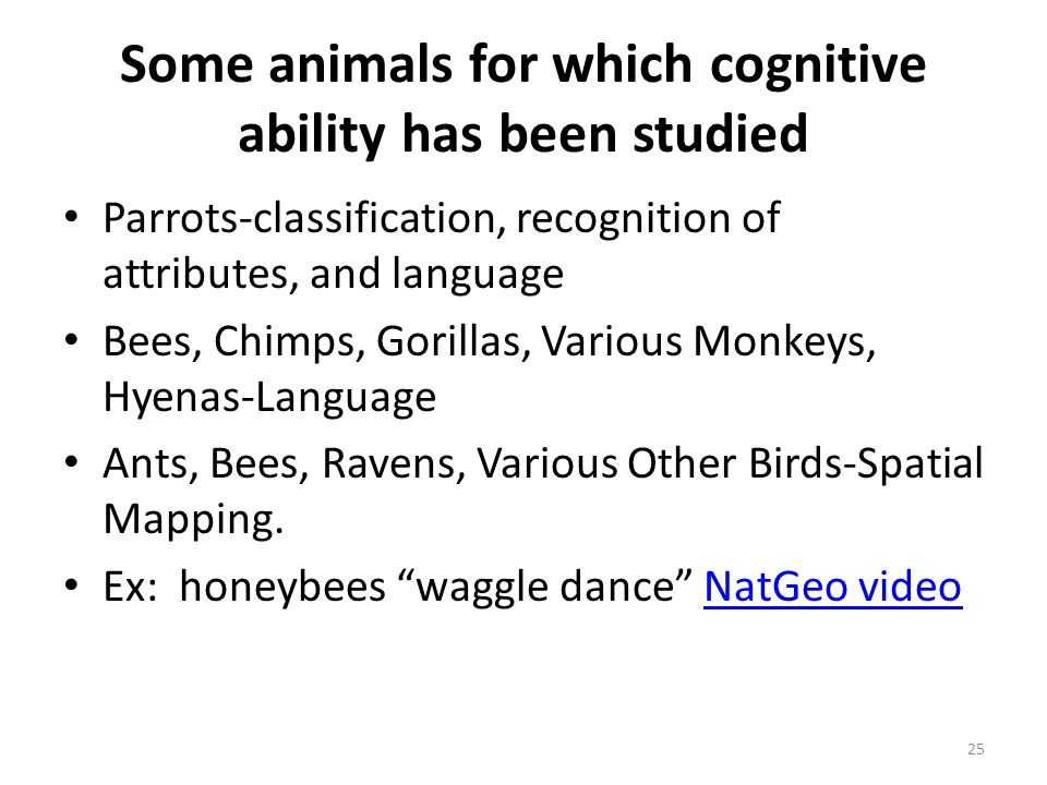 Some animals for which cognitive ability has been studied Parrots-classification, recognition of attributes, and language Bees, Chimps, Gorillas, Vari