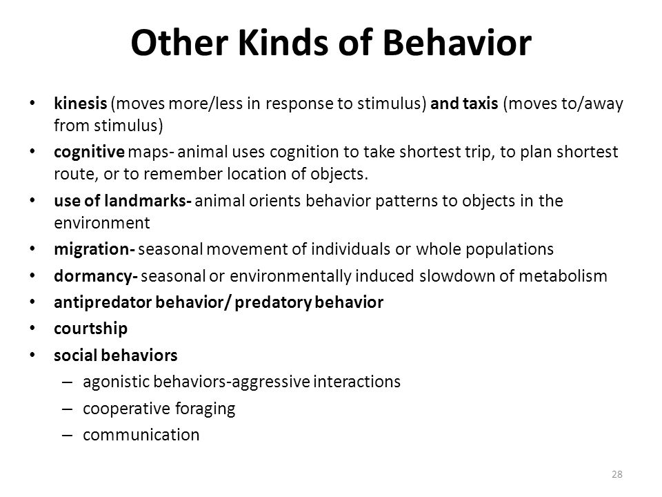 Other Kinds of Behavior kinesis (moves more/less in response to stimulus) and taxis (moves to/away from stimulus) cognitive maps- animal uses cognitio