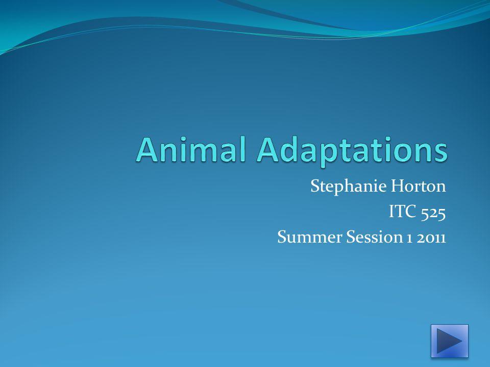 Stephanie Horton ITC 525 Summer Session 1 2011