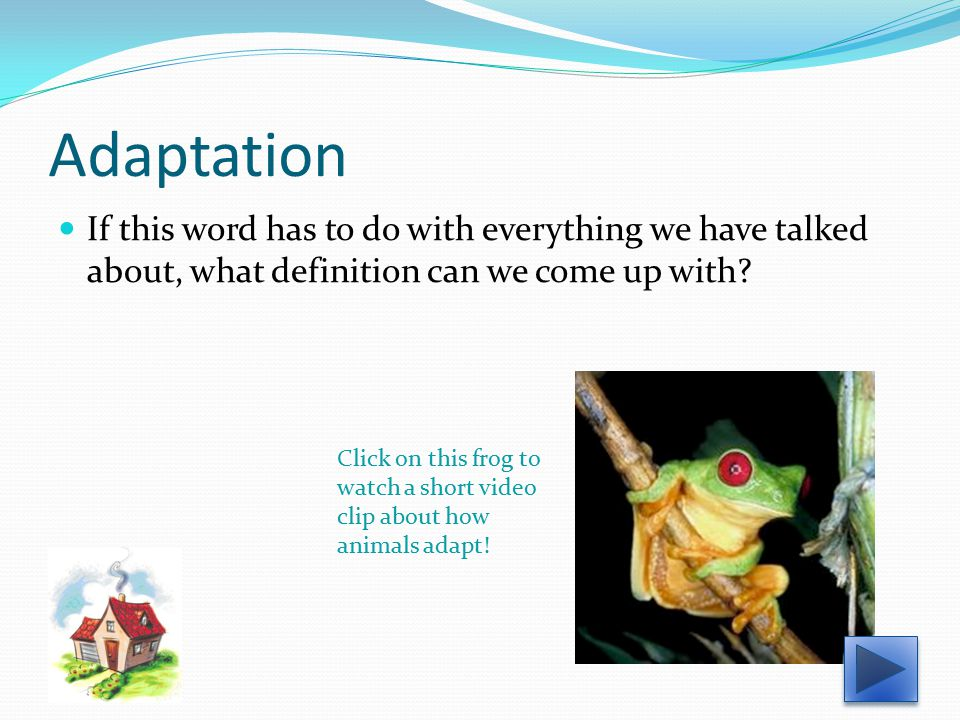 Adaptation If this word has to do with everything we have talked about, what definition can we come up with.