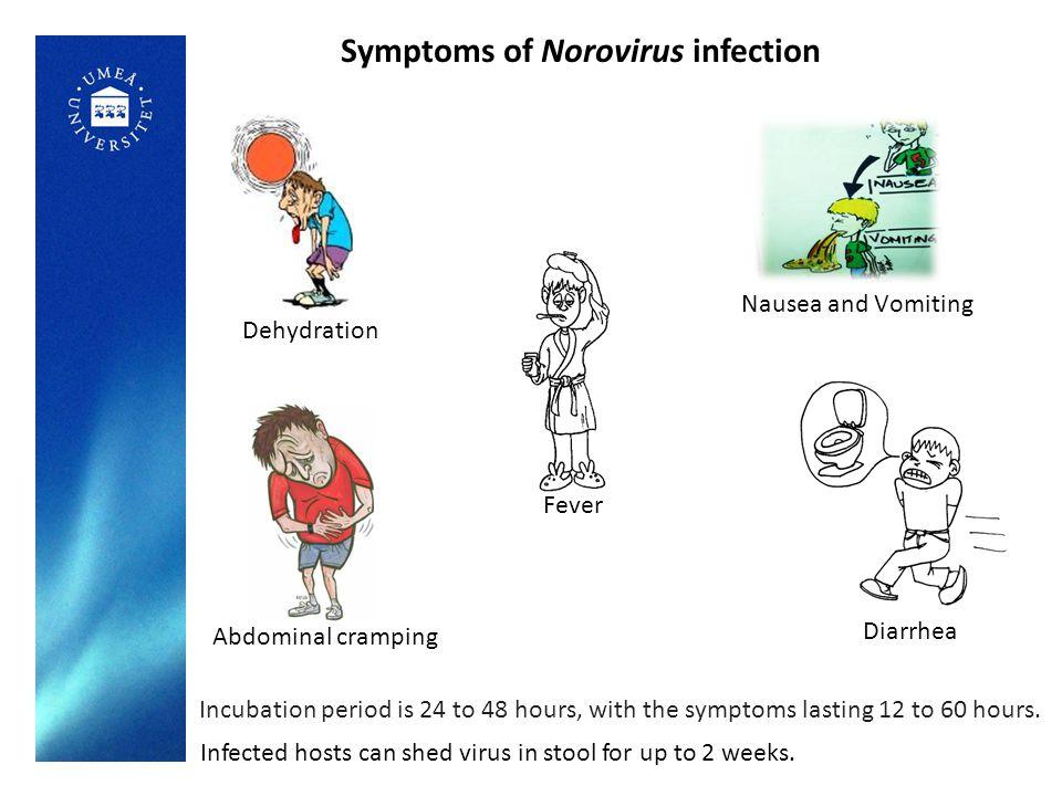 Transmission of Norovirus