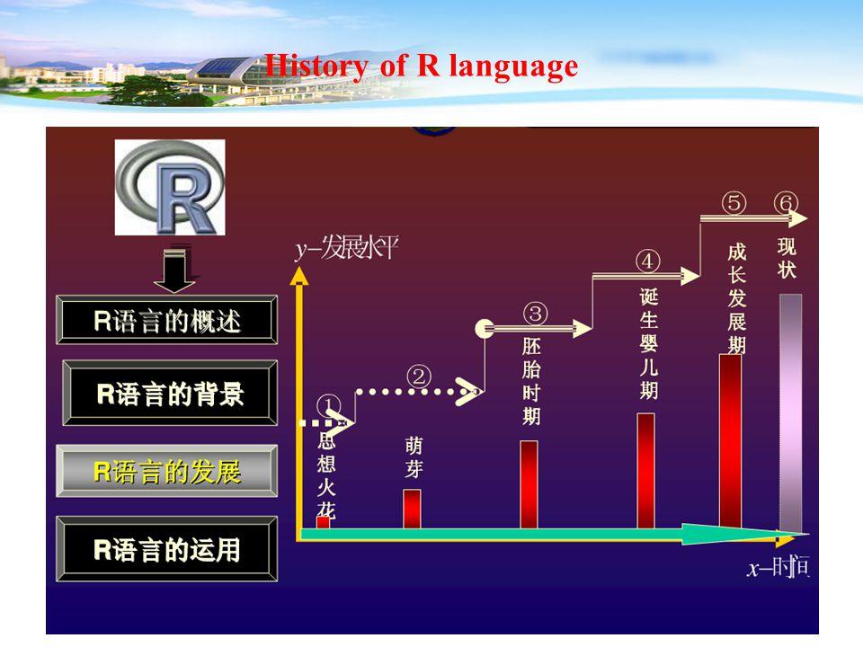 11 History of R language