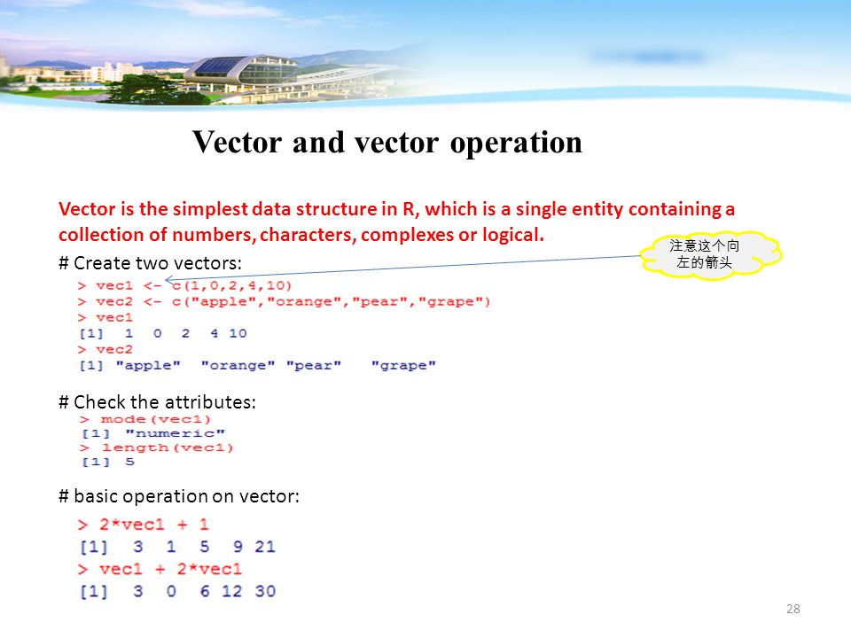 28 Vector and vector operation Vector is the simplest data structure in R, which is a single entity containing a collection of numbers, characters, co