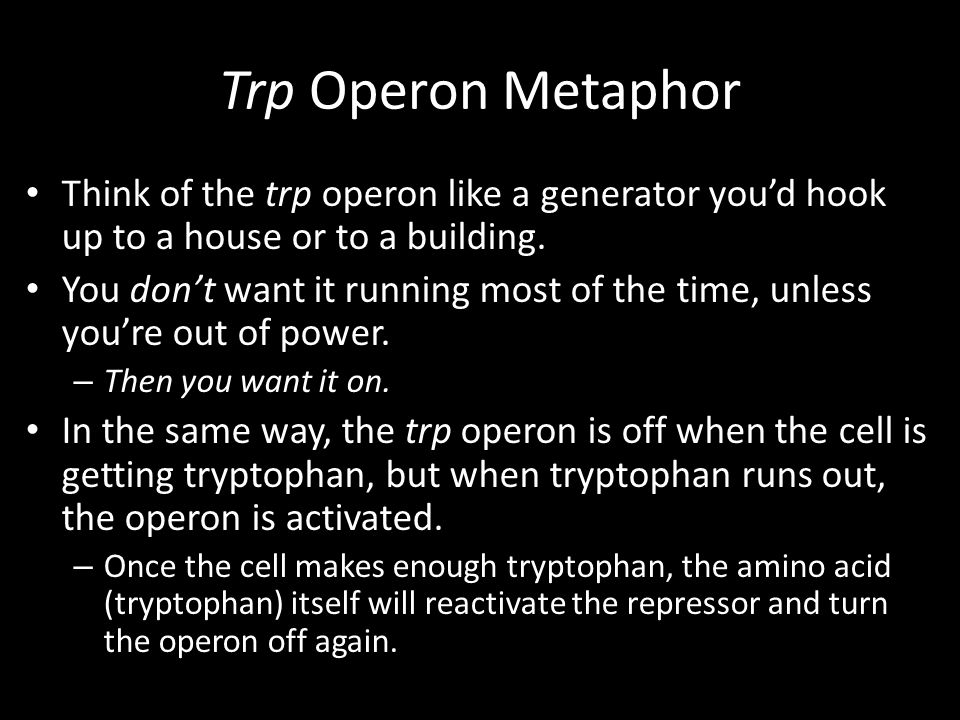 Trp Operon Metaphor Think of the trp operon like a generator you'd hook up to a house or to a building.