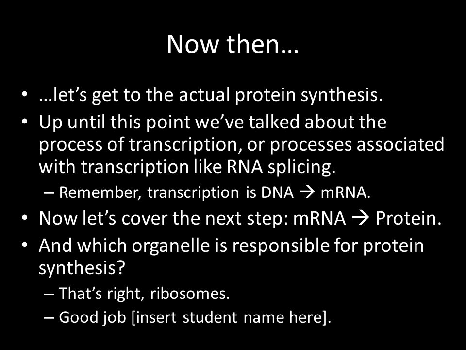 Now then… …let's get to the actual protein synthesis.