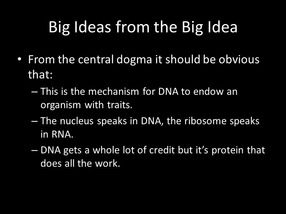 Big Ideas from the Big Idea From the central dogma it should be obvious that: – This is the mechanism for DNA to endow an organism with traits.