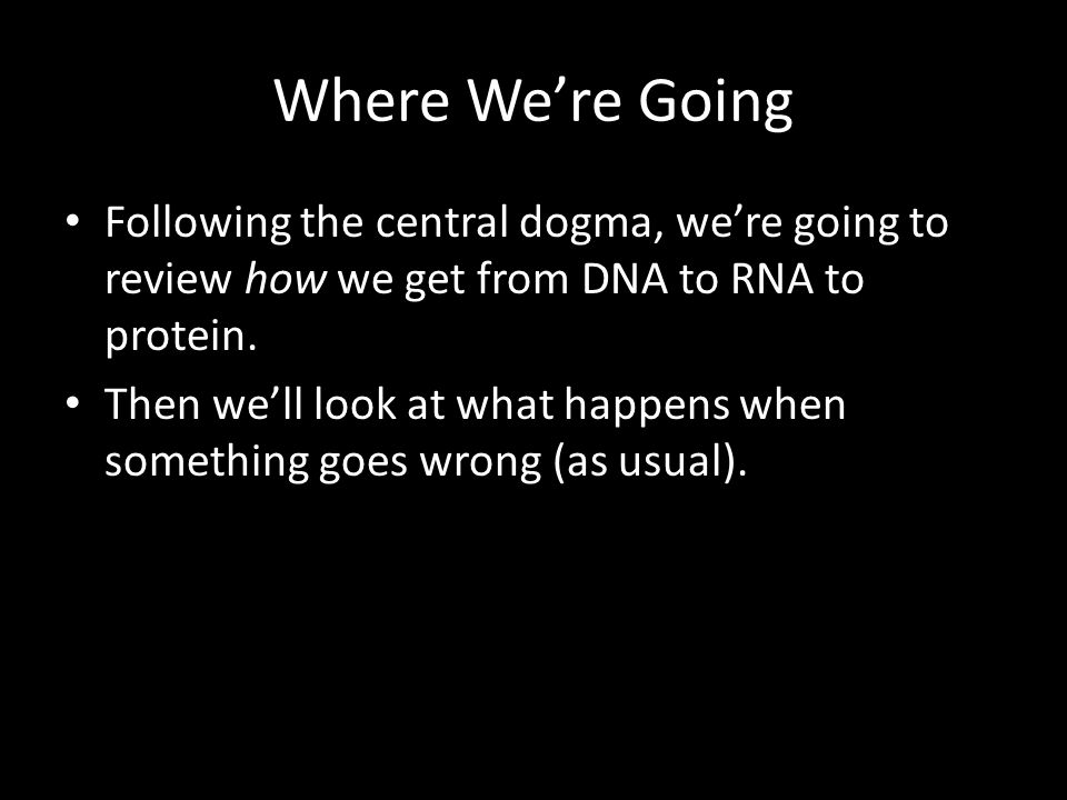 3.Termination RNA polymerase stops at a termination sequence.