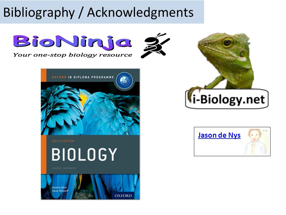 Bibliography / Acknowledgments Jason de Nys