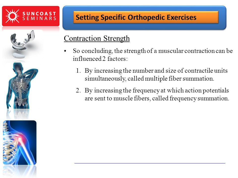 Contraction Strength So concluding, the strength of a muscular contraction can be influenced 2 factors: 1.By increasing the number and size of contrac