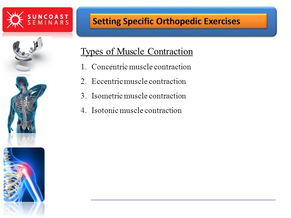 Types of Muscle Contraction 1.Concentric muscle contraction 2.Eccentric muscle contraction 3.Isometric muscle contraction 4.Isotonic muscle contractio
