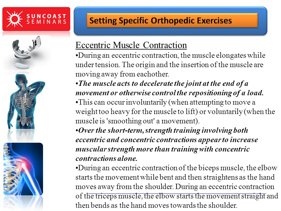 Eccentric Muscle Contraction During an eccentric contraction, the muscle elongates while under tension. The origin and the insertion of the muscle are