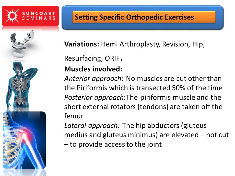 Variations: Hemi Arthroplasty, Revision, Hip, Resurfacing, ORIF. Muscles involved: Anterior approach: No muscles are cut other than the Piriformis whi