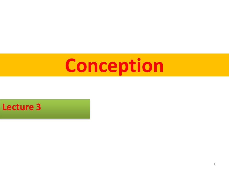 Conception Conception is when sperm and egg meet and fertilization occurs Conception occurs in the outer third of the fallopian tube Zygote - fertilized egg http://www.youtube.com/watch?v=SdZW_K9J -nY http://www.youtube.com/watch?v=SdZW_K9J -nY 2