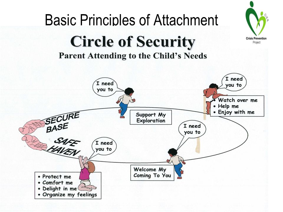 Basic Principles of Attachment