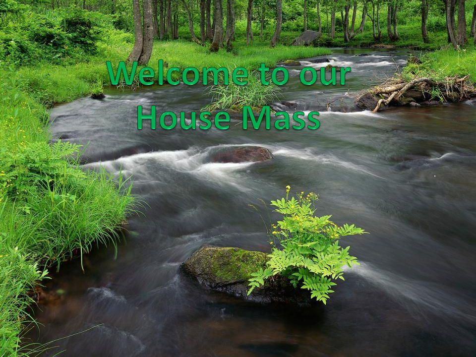 Lord may we appreciate the gift of nature By rushing waters he leads me