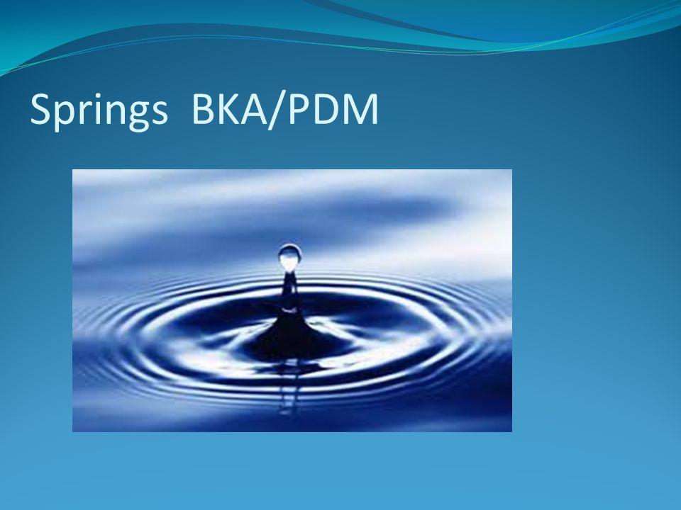 Springs BKA/PDM