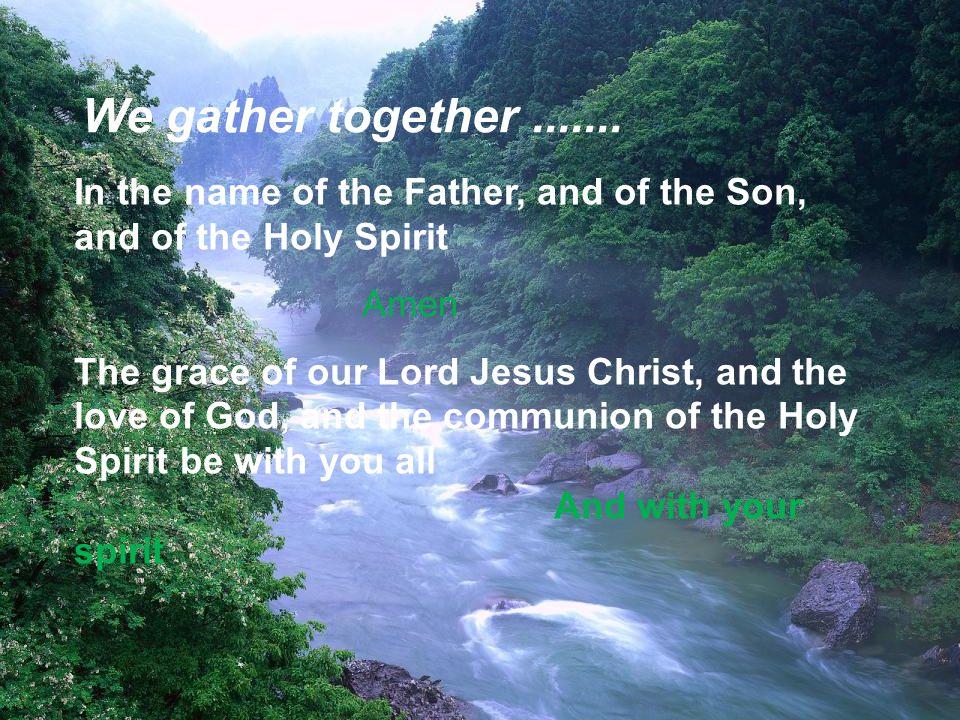 Let us stand to greet the Gospel Alleluia, alleluia.