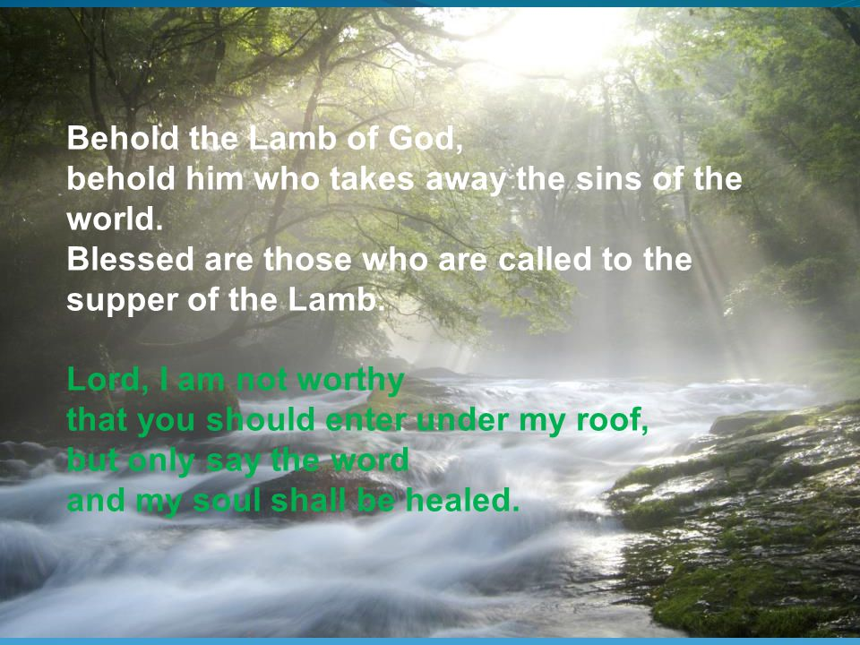 Behold the Lamb of God, behold him who takes away the sins of the world.
