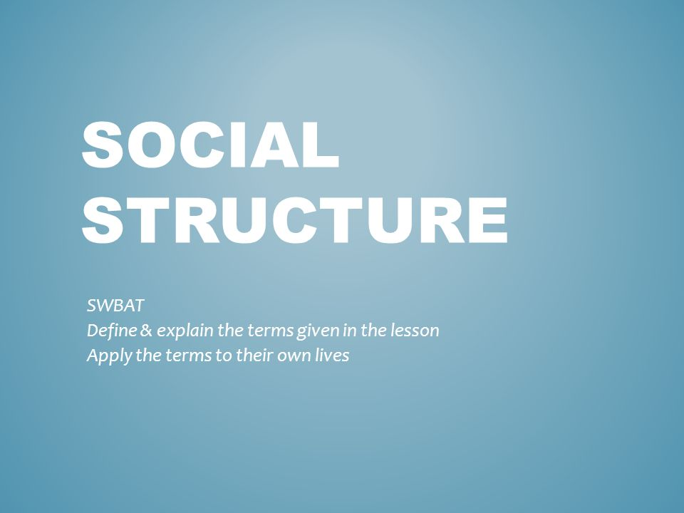 SOCIAL STRUCTURE SWBAT Define & explain the terms given in the lesson Apply the terms to their own lives