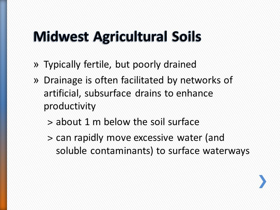 » Typically fertile, but poorly drained » Drainage is often facilitated by networks of artificial, subsurface drains to enhance productivity ˃about 1