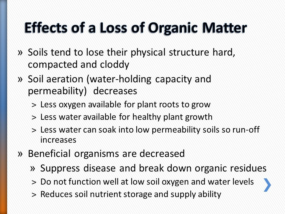 » Soils tend to lose their physical structure hard, compacted and cloddy » Soil aeration (water-holding capacity and permeability) decreases ˃Less oxy