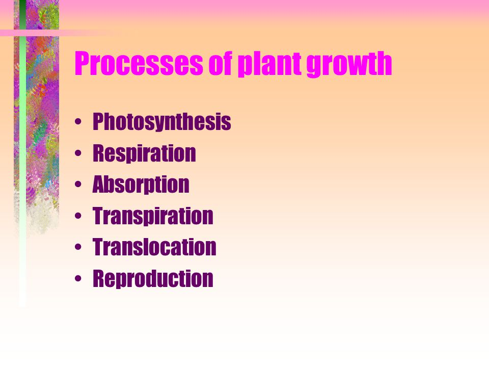Processes of plant growth Photosynthesis Respiration Absorption Transpiration Translocation Reproduction