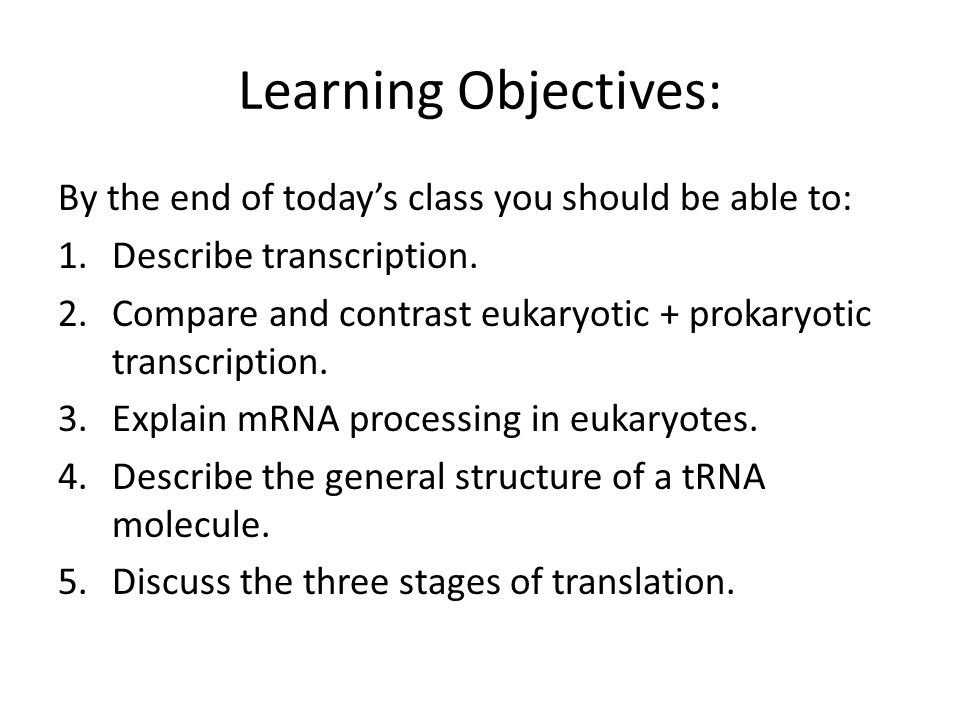 Learning Objectives: By the end of today's class you should be able to: 1.Describe transcription.