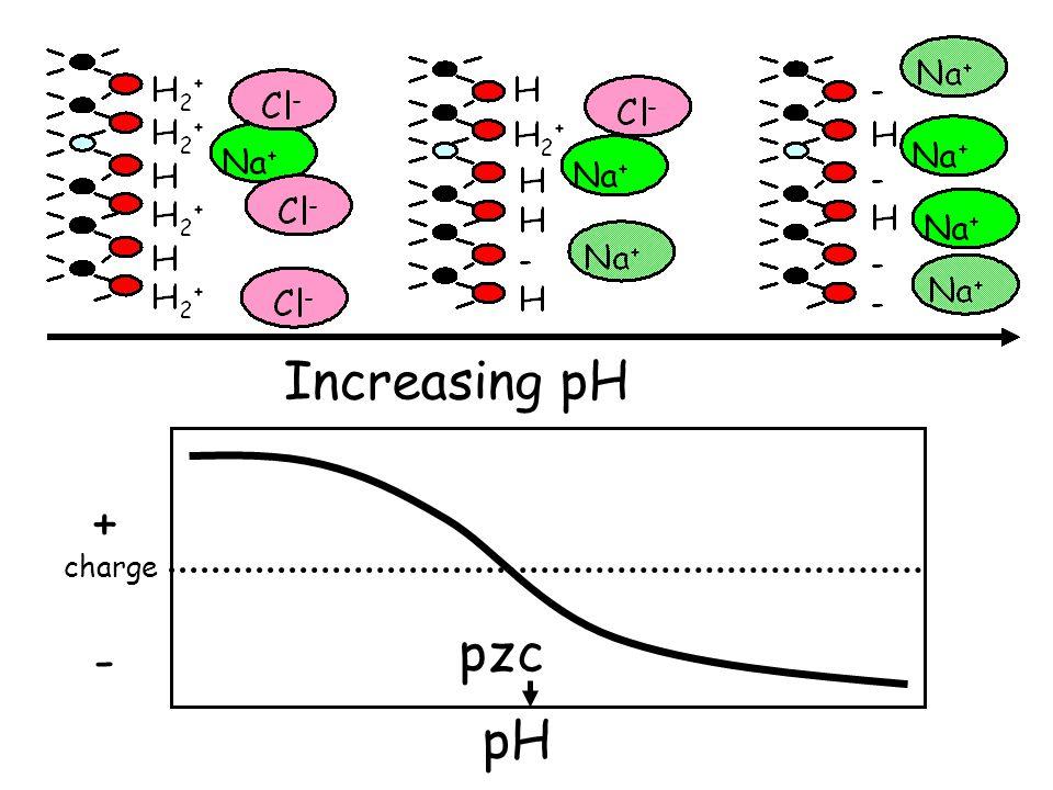 - H + Increasing pH H H H2+H2+ H2+H2+ H2+H2+ H2+H2+ H H2+H2+ H - - - H H - - H H + H + - H + + H + + - pH pzc charge