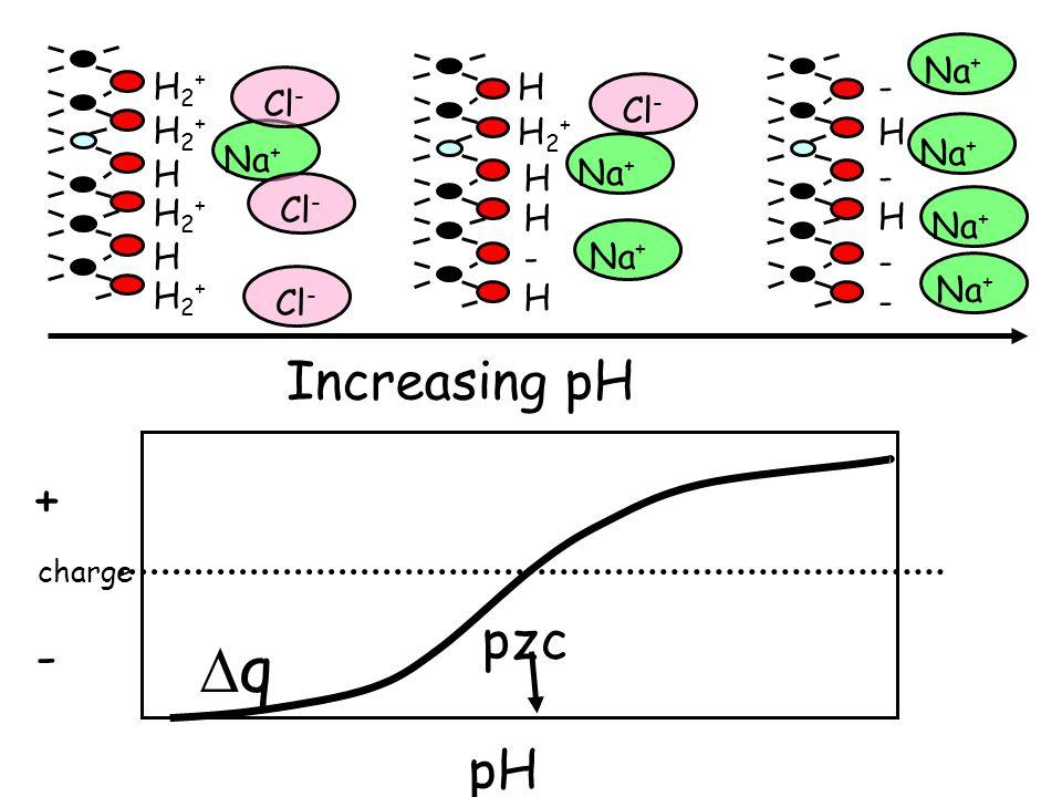 Na + H H H2+H2+ H2+H2+ H2+H2+ H2+H2+ H H2+H2+ H - - - H H - - H H Cl - Na + qq + - pH pzc Increasing pH Na + charge