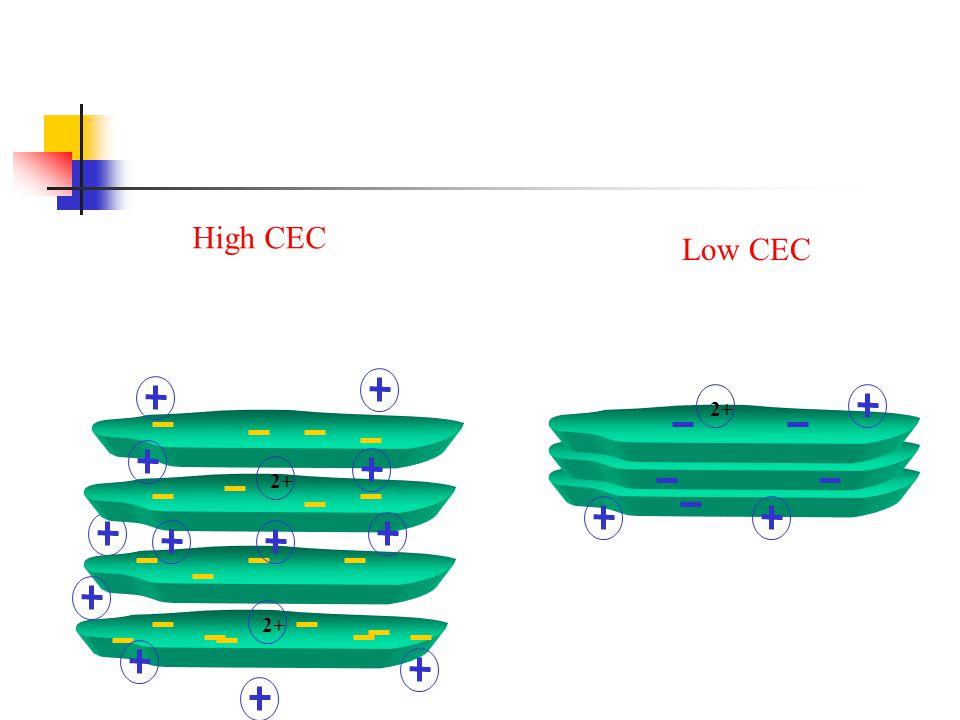 High CEC 2+ Low CEC