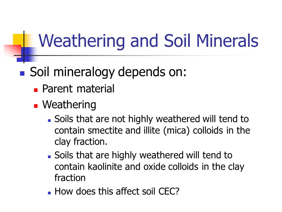 Weathering and Soil Minerals Soil mineralogy depends on: Parent material Weathering Soils that are not highly weathered will tend to contain smectite