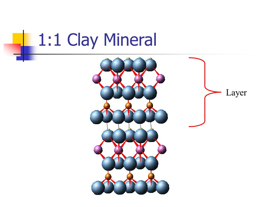 2:1 Clay Mineral Interlayer