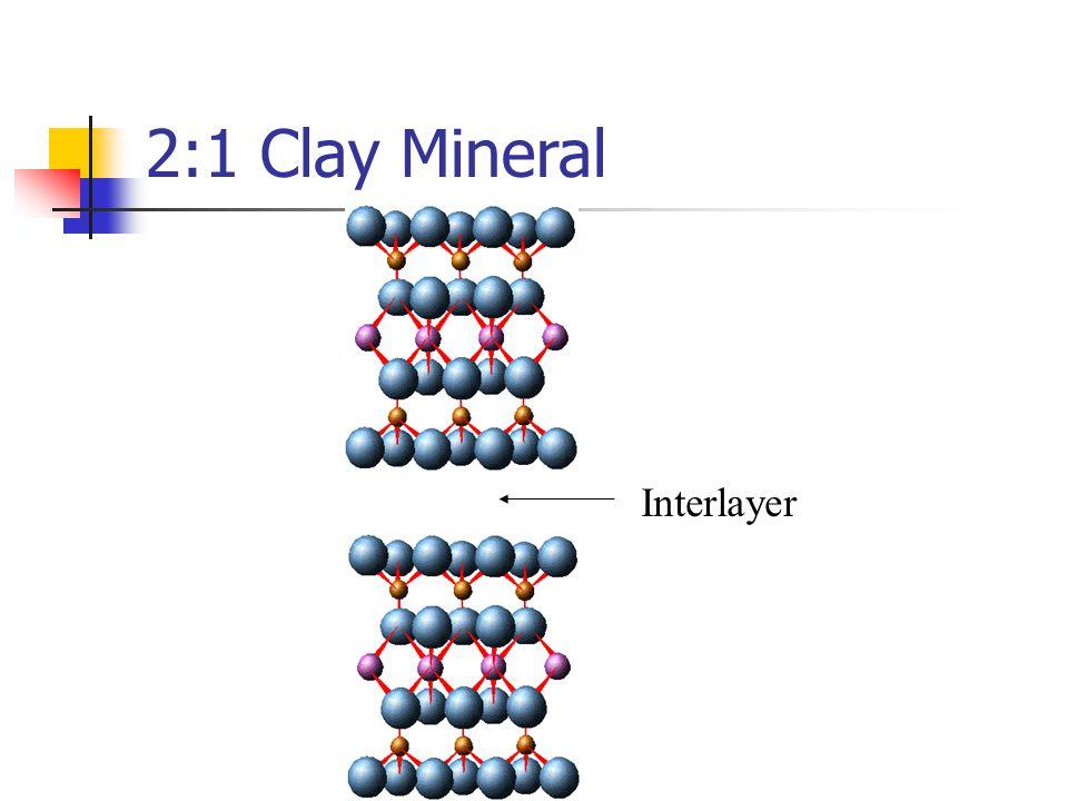 2:1 Clay Mineral Interlayer