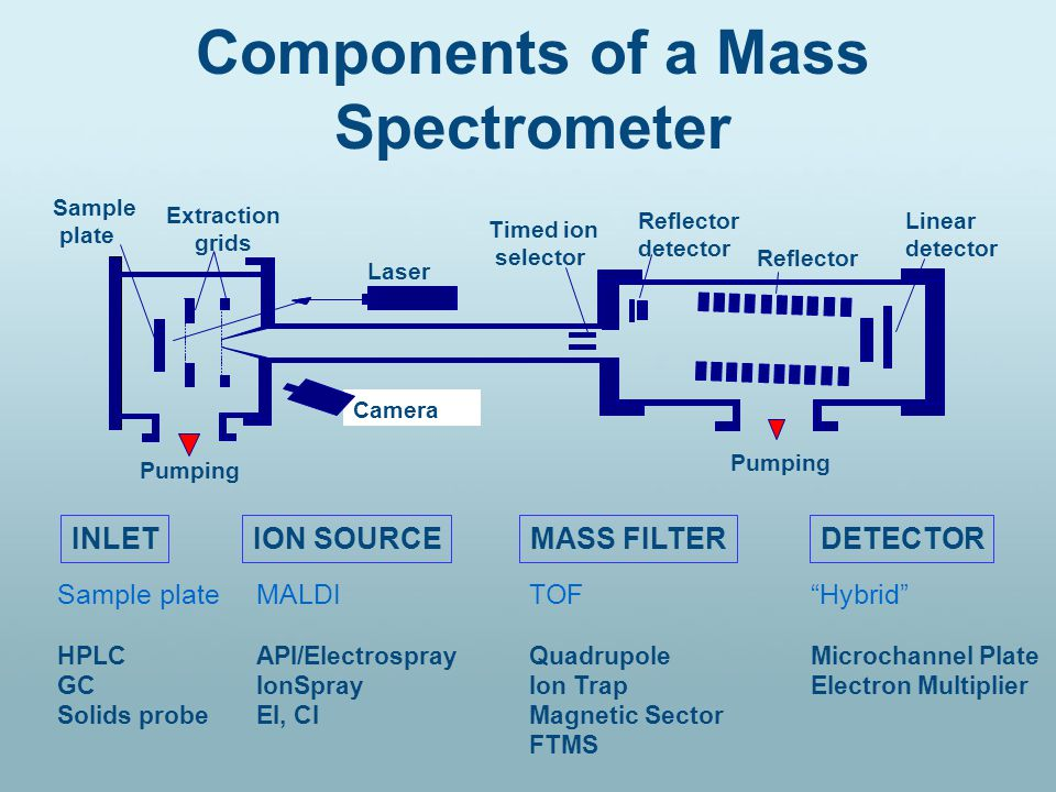 Components of a Mass Spectrometer INLETION SOURCEMASS FILTERDETECTOR Sample plate HPLC GC Solids probe MALDI API/Electrospray IonSpray EI, CI TOF Quadrupole Ion Trap Magnetic Sector FTMS Hybrid Microchannel Plate Electron Multiplier