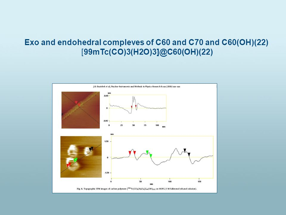 Exo and endohedral compleves of C60 and C70 and C60(OH)(22) [99mTc(CO)3(H2O)3]@C60(OH)(22)