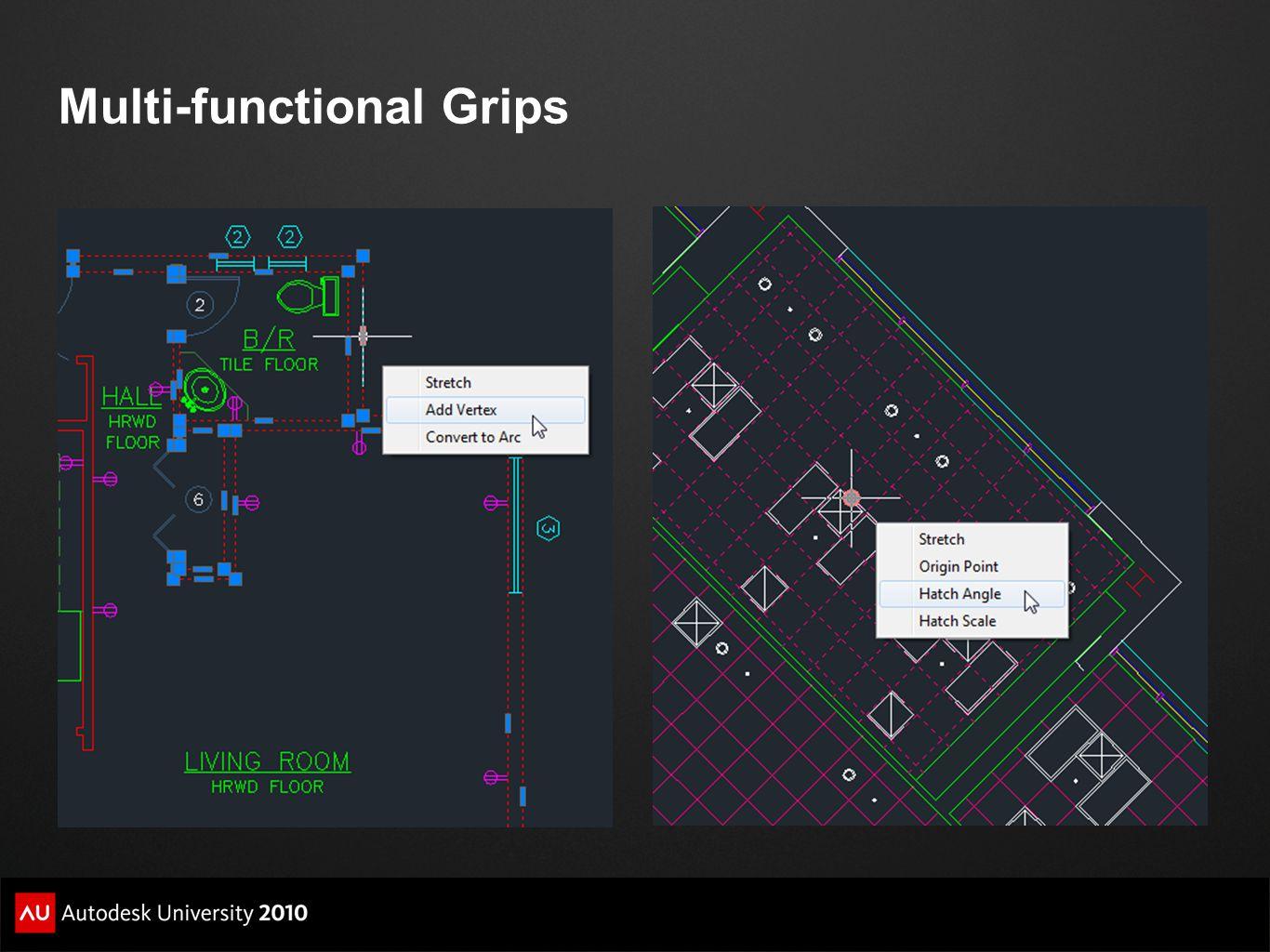 Multi-functional Grips