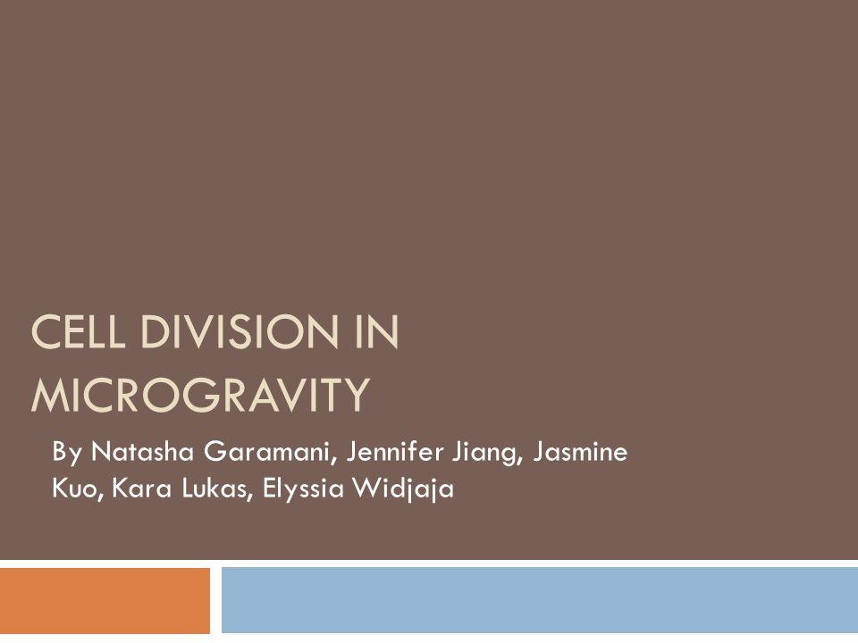 CELL DIVISION IN MICROGRAVITY By Natasha Garamani, Jennifer Jiang, Jasmine Kuo, Kara Lukas, Elyssia Widjaja