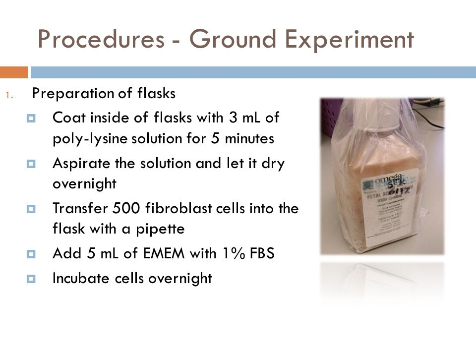Procedures - Ground Experiment 1. Preparation of flasks  Coat inside of flasks with 3 mL of poly-lysine solution for 5 minutes  Aspirate the solutio