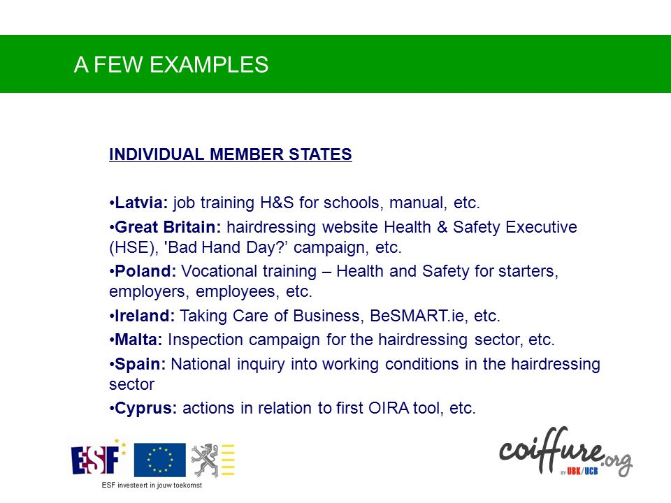 A FEW EXAMPLES INDIVIDUAL MEMBER STATES Latvia: job training H&S for schools, manual, etc.