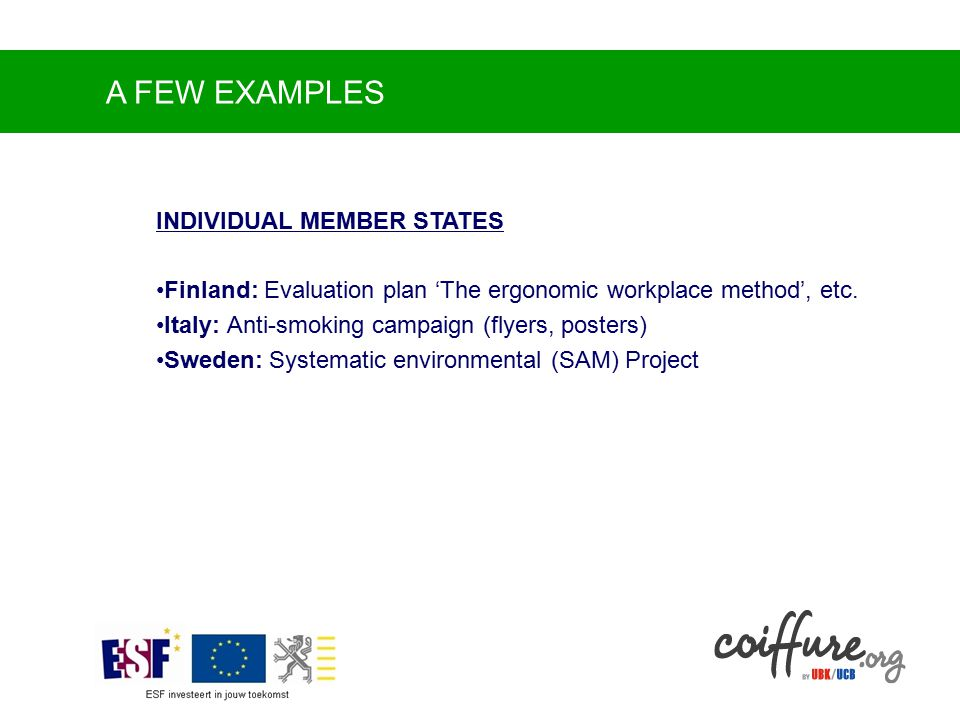 A FEW EXAMPLES INDIVIDUAL MEMBER STATES Finland: Evaluation plan 'The ergonomic workplace method', etc.