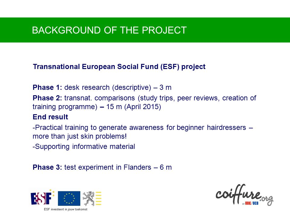 BACKGROUND OF THE PROJECT Transnational European Social Fund (ESF) project Phase 1: desk research (descriptive) – 3 m Phase 2: transnat.