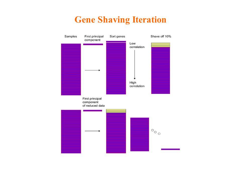 Gene Shaving Iteration