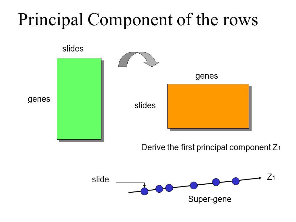 Principal Component of the rows slides genes slides genes Derive the first principal component Z 1 Z1Z1 slide Super-gene