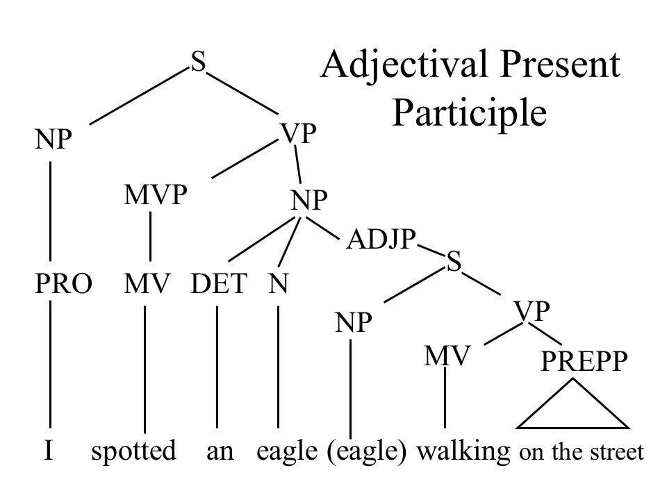 I spotted an eagle (eagle) walking on the street S NP VP MVP MV ADJP S NP VP MV PREPP PRONDET NP Adjectival Present Participle