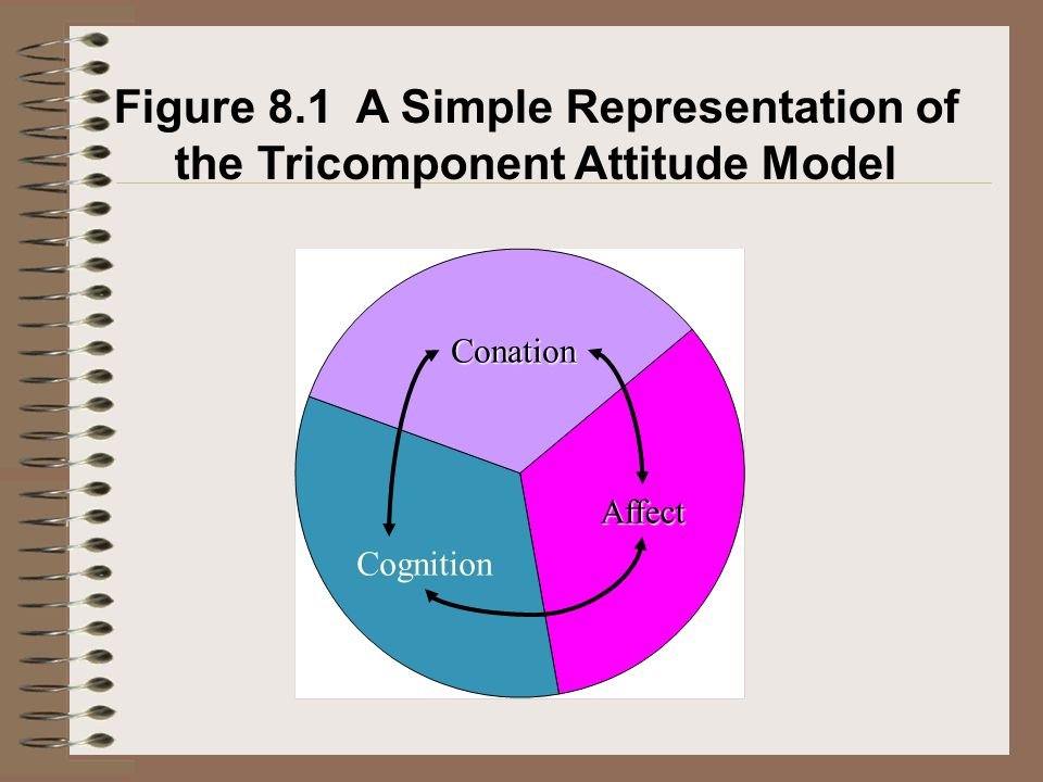 Figure 8.1 A Simple Representation of the Tricomponent Attitude Model Conation Affect Cognition